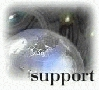 Visit the IBM Support HOME-Page