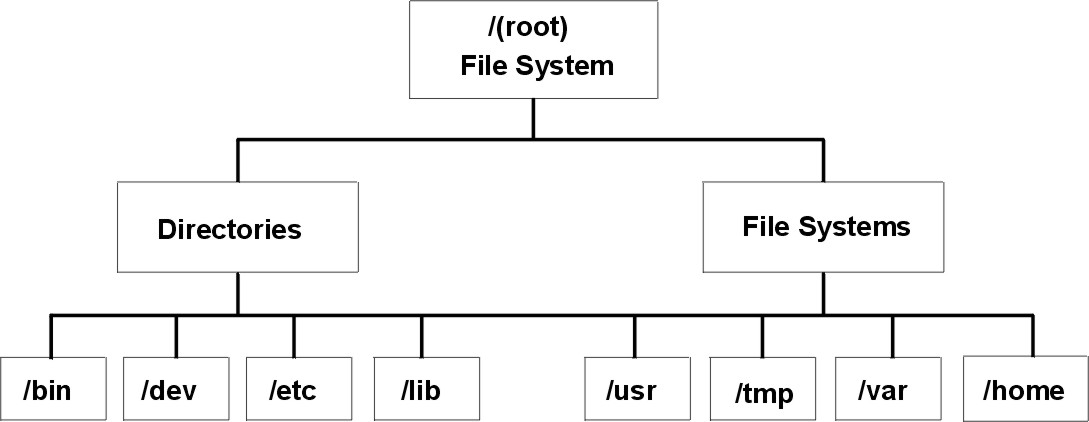 db vs file system In database management system (dbms), data files are the files that store the database information, whereas other files, such as index files and data dictionaries.